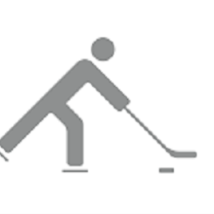 1998 U.S. Olympic Women's Ice Hockey Team